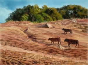 Cattle Trails - Rosanne Seitz 22 x 30